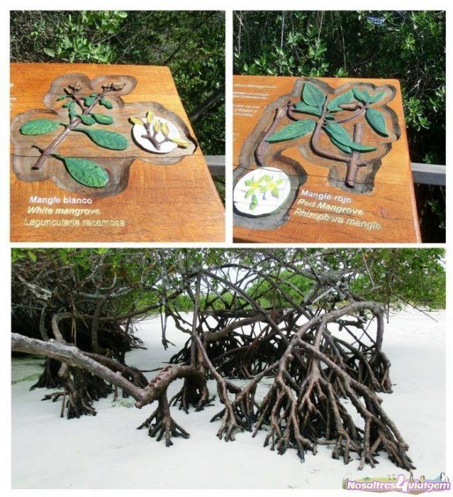 Aprendiendo en el Parque Nacional de las Islas Galápagos (2013)