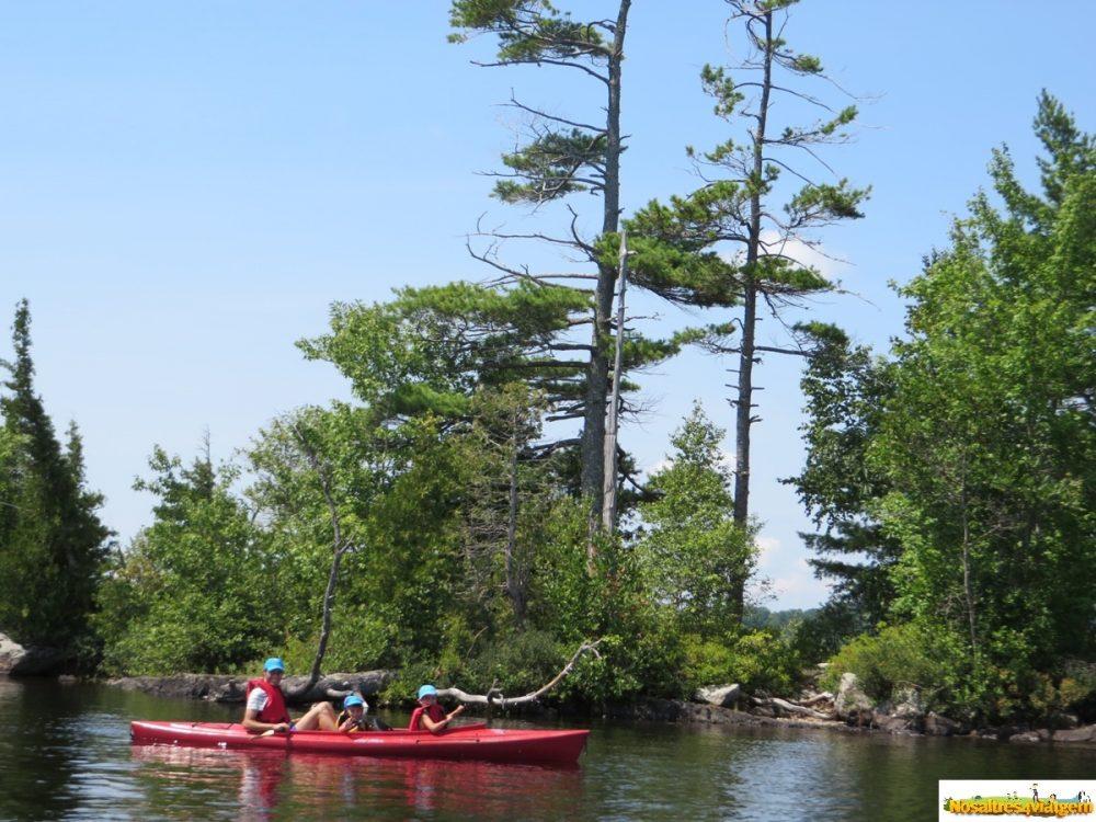 Kayakeando con unos amigos en Maine