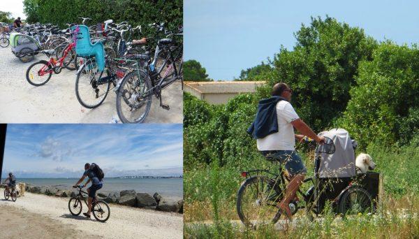 El millor mitjà de transpor, sense dubte, és la bicicleta (França, 2016)