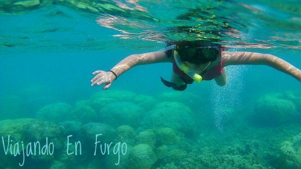 DIsfrutar de la experiencia de bucear entre corales, otro momento único