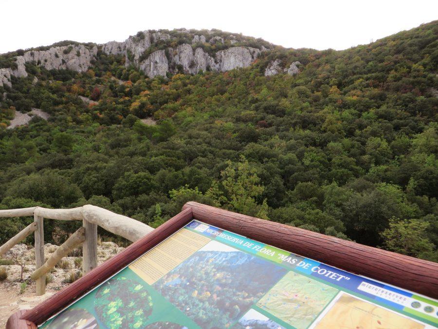 Paneles que informan de las particularidades del parque