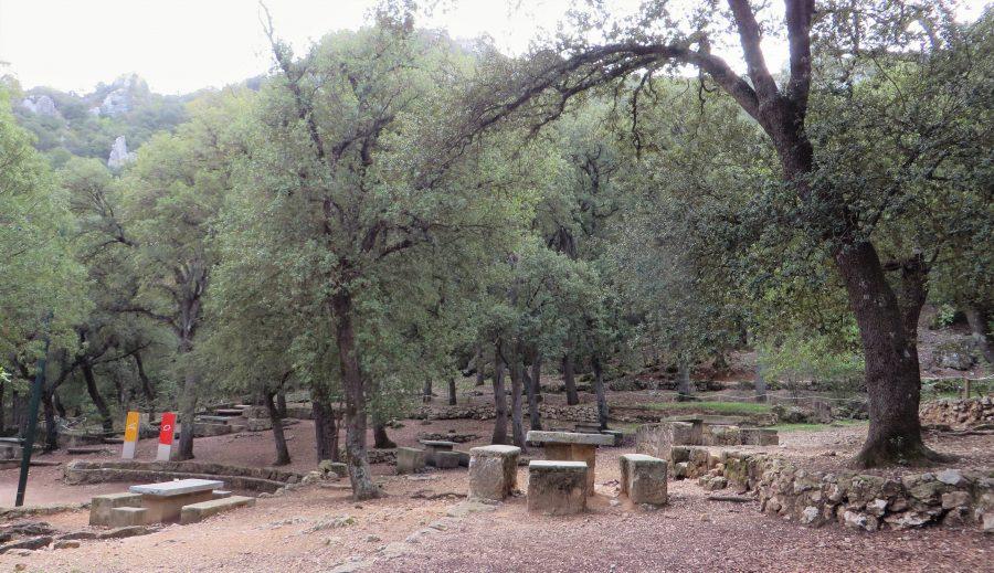 Merendero en el parque natural de la Font Roja (Alcoi, Alicante)