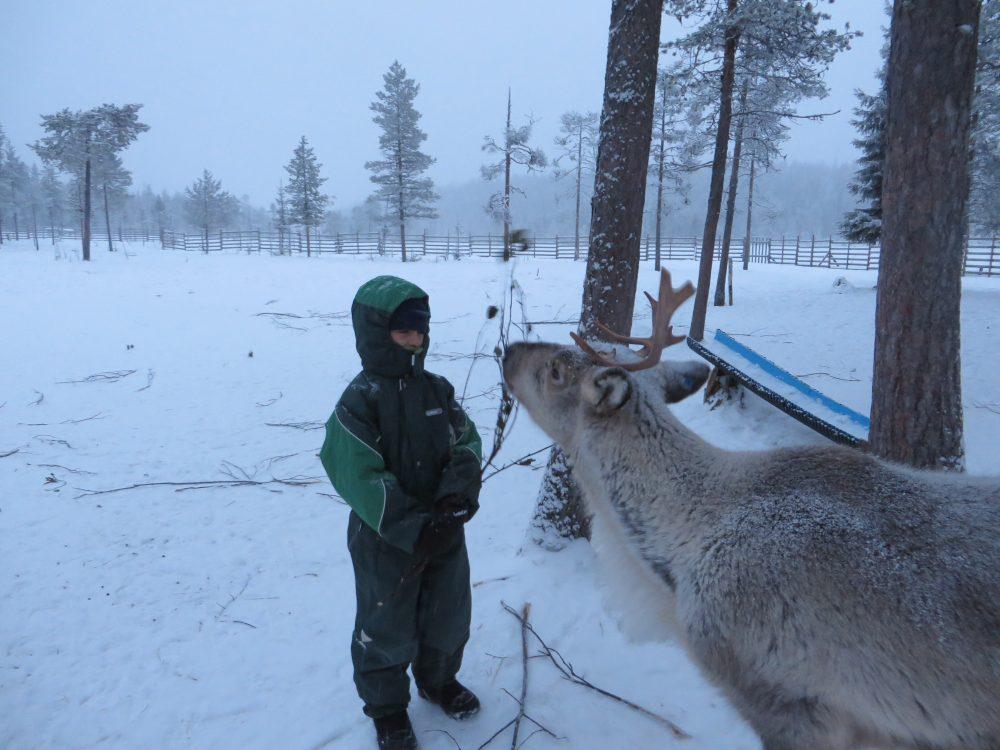 finlandia renos sala