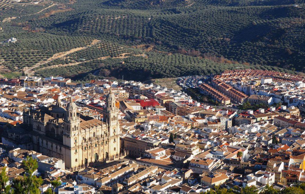 jaen castillo catedral